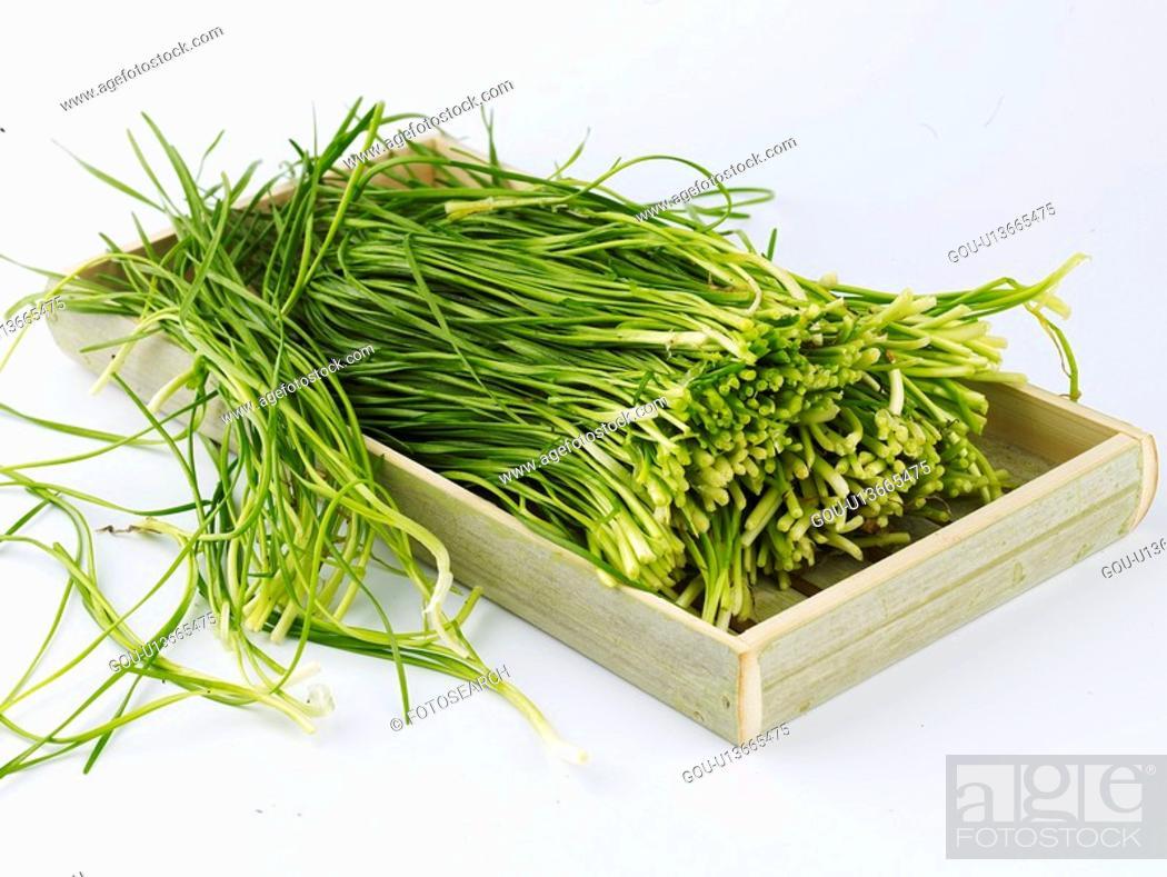 Stock Photo: vegetables, food, ingredient, food material, cuisine, garlic chives.