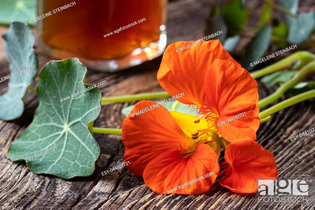 Stock Photo: Fresh nasturtium flower, with a bottle of tincture in the background.