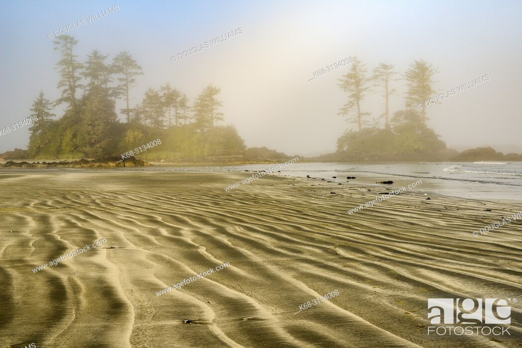 Imagen: Beach on Flores Island, off the west coast of Vancouver Island, British Columbia, Canada.