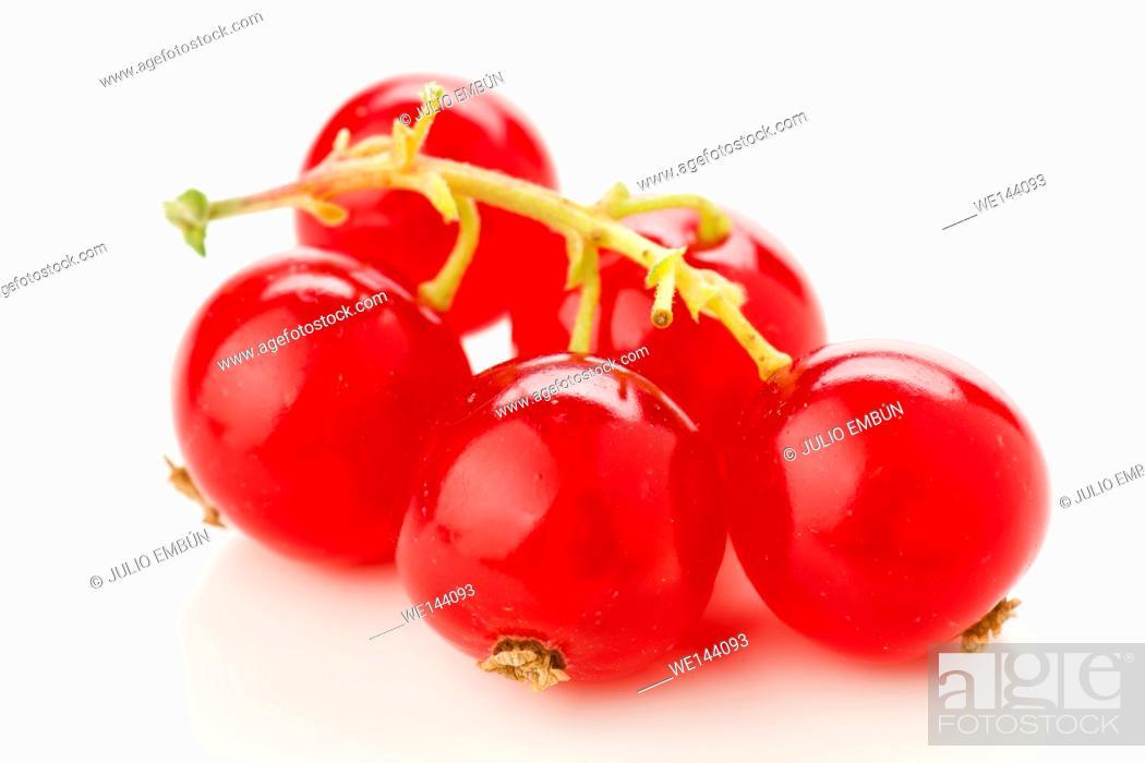 Photo de stock: grains of ripe red currants, macro shot on white.
