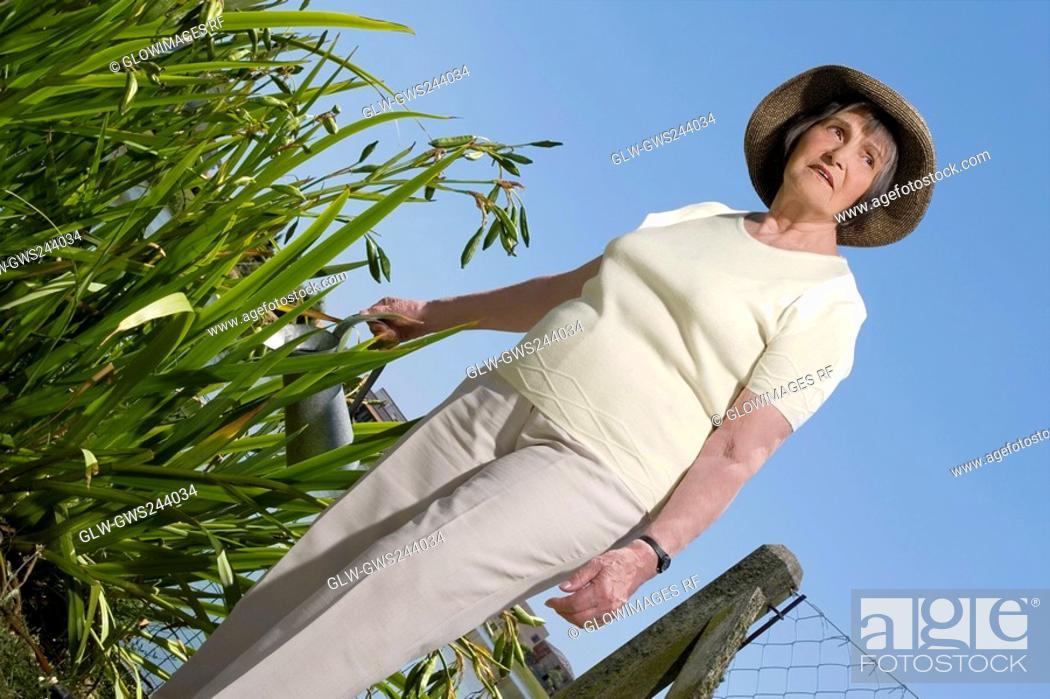 Stock Photo: Senior woman watering plants.