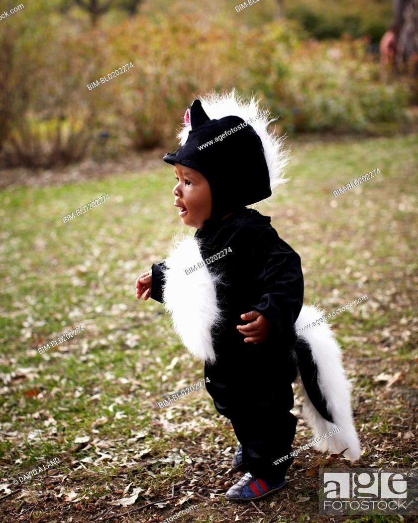 Stock Photo: African American baby in skunk costume.