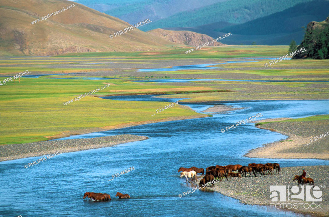 Stock Photo: Rallying of horses drove. Orkhon valley. Övörkhangai province. Mongolia.