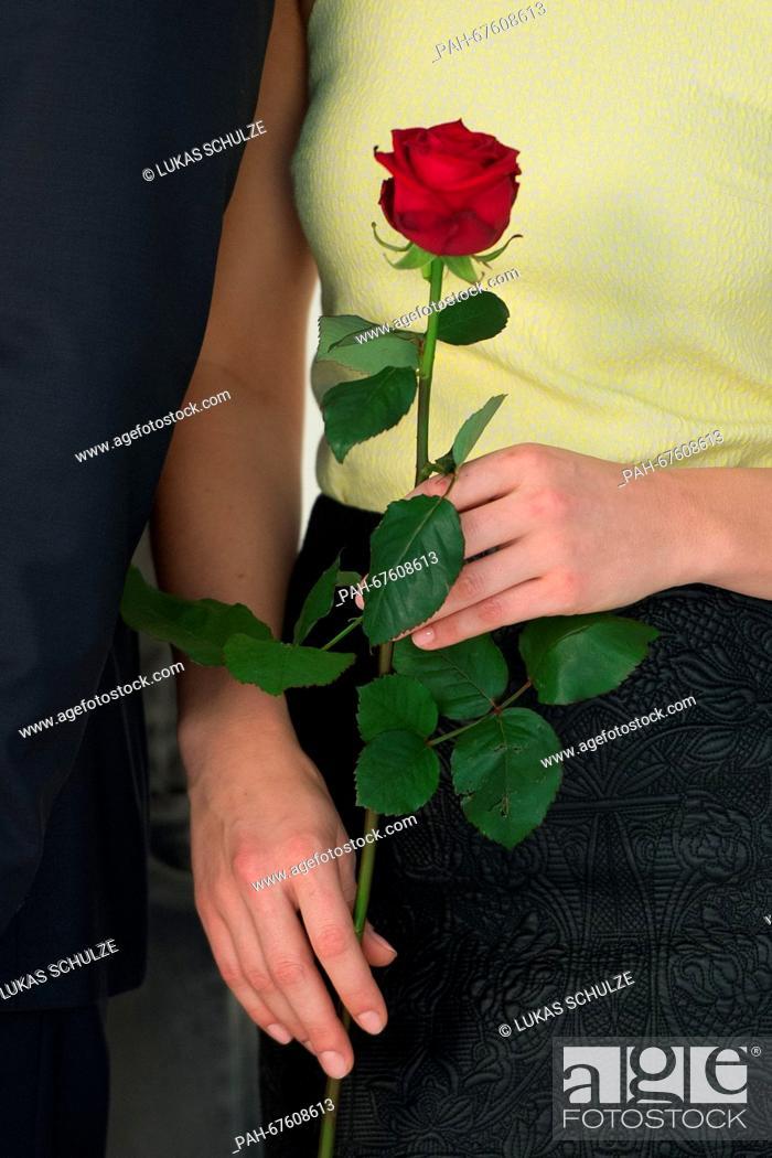 ard rote rosen alle videos