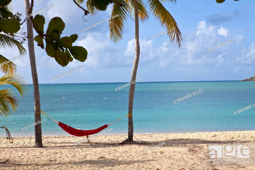 Stock Photo: Hammock on coconut palms Sunbay beach in Vieques Island, Puerto Rico.