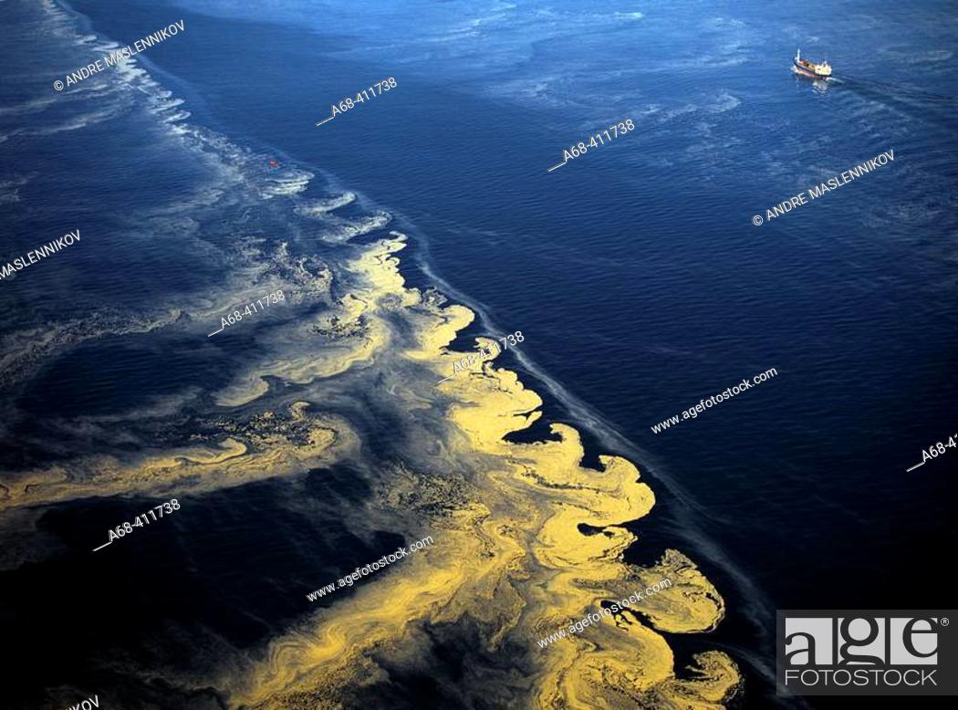 Stock Photo: Algal bloom in the Baltic Sea seen from a light aeroplane. Sweden.