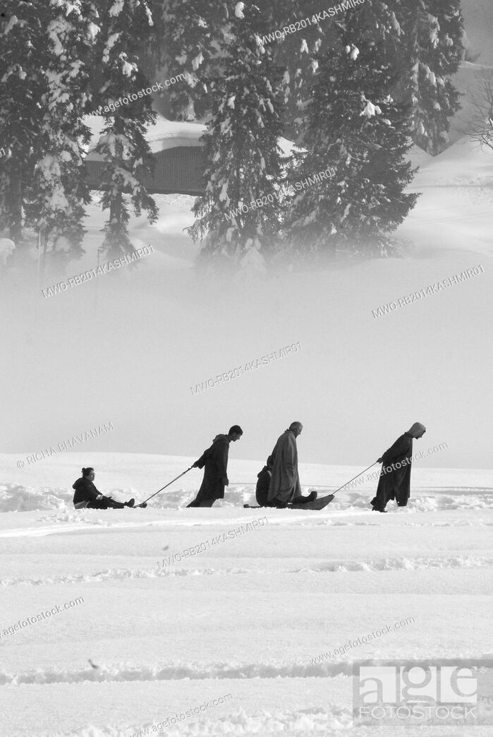 Stock Photo: Kashmir, India. Snow sledges are a popular tourist attraction in Gulmarg, Kashmir. Many tourists visit Kashmir to experience the snow and enjoy snow sports.