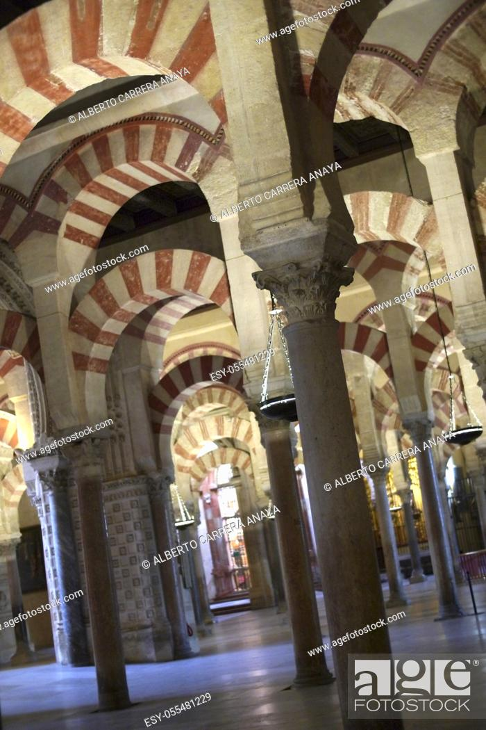 Stock Photo: Arches and columns, Cathedral of our Lady of the Assumption Great Mosque of Córdoba, Cordoba, Andalusia, Spain, Europe.