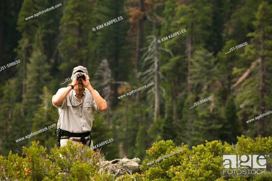 Stock Photo: CALIFORNIA   South Lake Tahoe   Male day hiker use binoculars from overlook point.