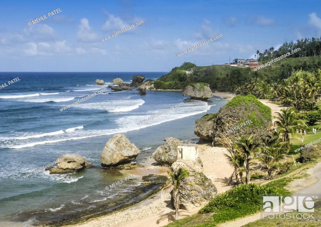 Imagen: Rugged coastline of Bathsheba on the east coast of Barbados.