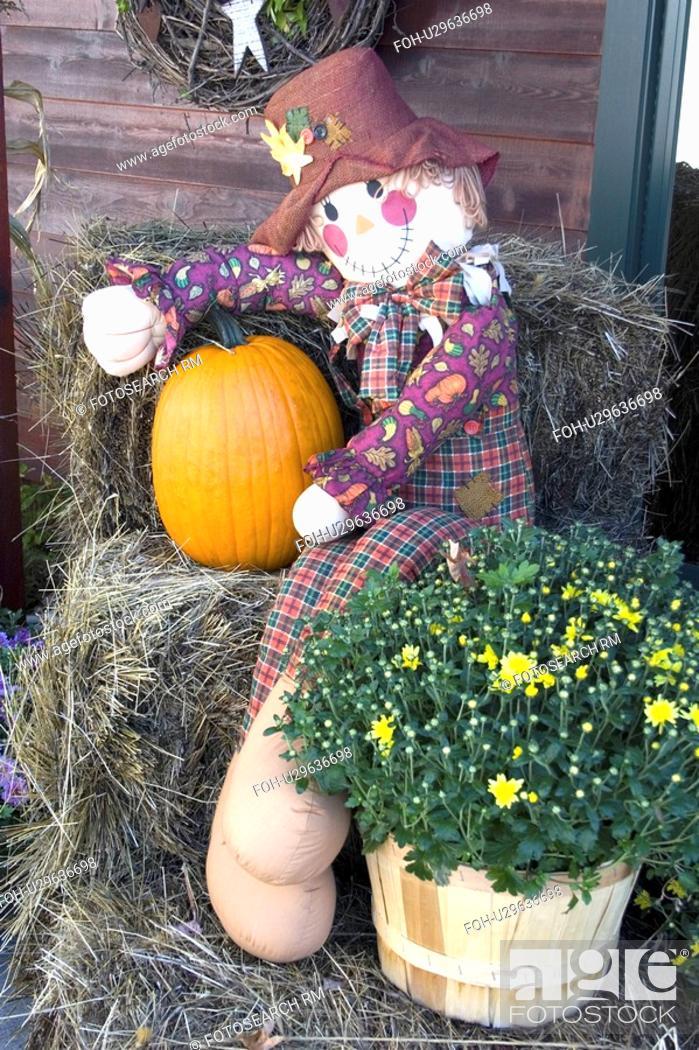 Stock Photo: pumpkin, mannequin, shop, front, sitting, halloween.