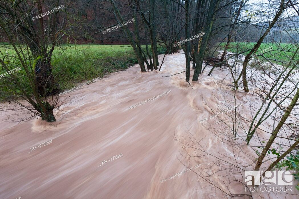 Stock Photo: Flash Flood, on hill stream, autumn, Lower Saxony, Germany.