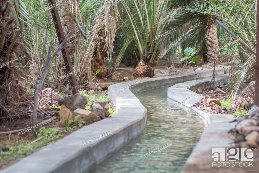 Imagen: United Arab Emirates - Centuries old, the irrigation water-sharing system in Abu Dhabi's Al Ain Oasis is part of the largest oasis in the UAE.