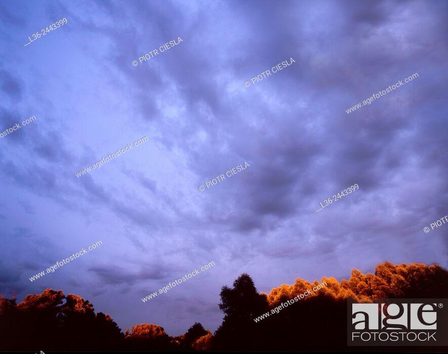 Stock Photo: Sunset, Poland.