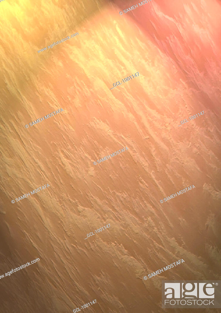 Stock Photo: Colorful background.