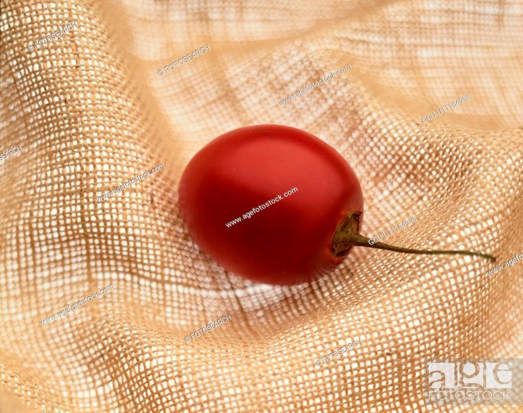 Stock Photo: Red Berry.