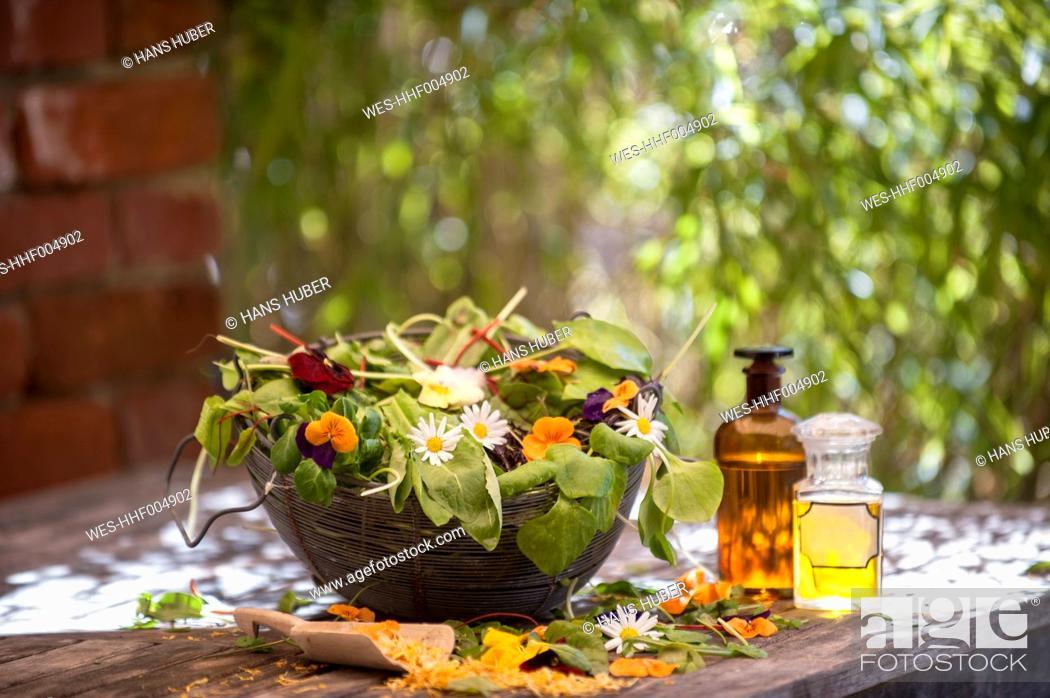 Stock Photo: Assortment of medicinal herbs.