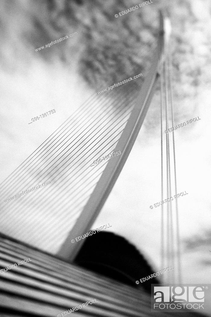 Stock Photo: L'Assut de l'Or bridge by Santiago Calatrava, Valencia, Spain.