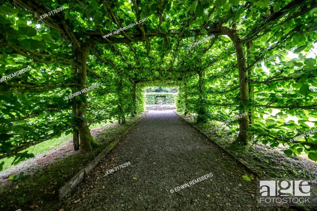 Stock Photo: Symmetric pathway through a canopy, Levens Hall , Kendal, Cumbria , UK.