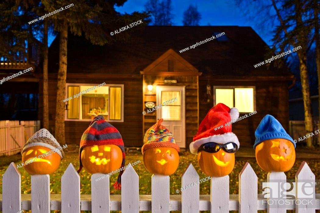 Stock Photo: Jack-O-Lantern faces wearing stocking caps, stuck on top of the fence boards of white picktet fence with a house in background at twilight during Fall in.