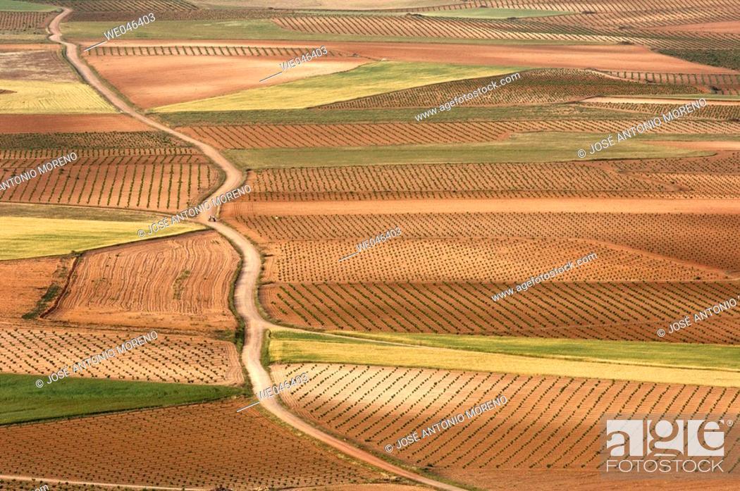 Stock Photo: Country landscape near Consuegra. Toledo province, Castilla- la Mancha, Spain .
