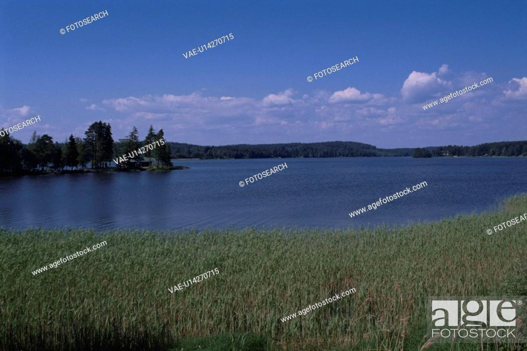 Stock Photo: A Forest And A Lake.