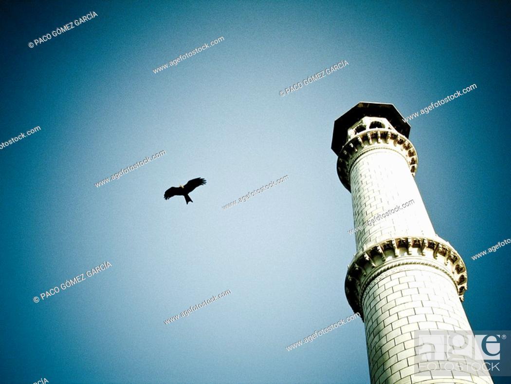 Stock Photo: Detail of Taj Mahal, Agra, Uttar Pradesh, India.