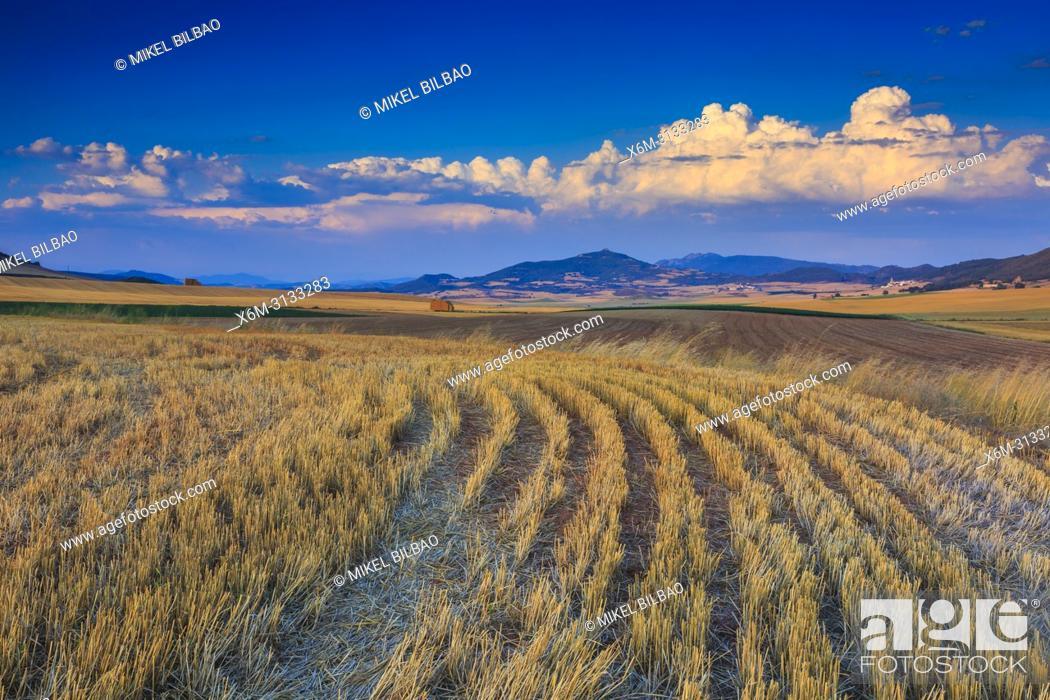 Imagen: Farmland. Tierra Estella. Navarre, Spain, Europe.