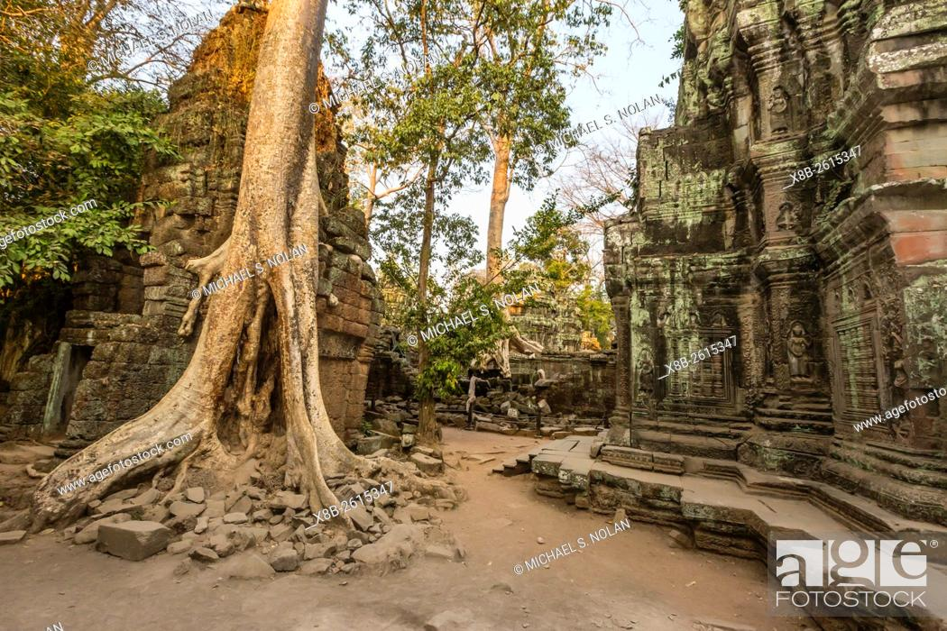 Stock Photo: Ta Prohm Temple, being destroyed by jungle growth, Angkor, Siem Reap Province, Cambodia, Khmer.