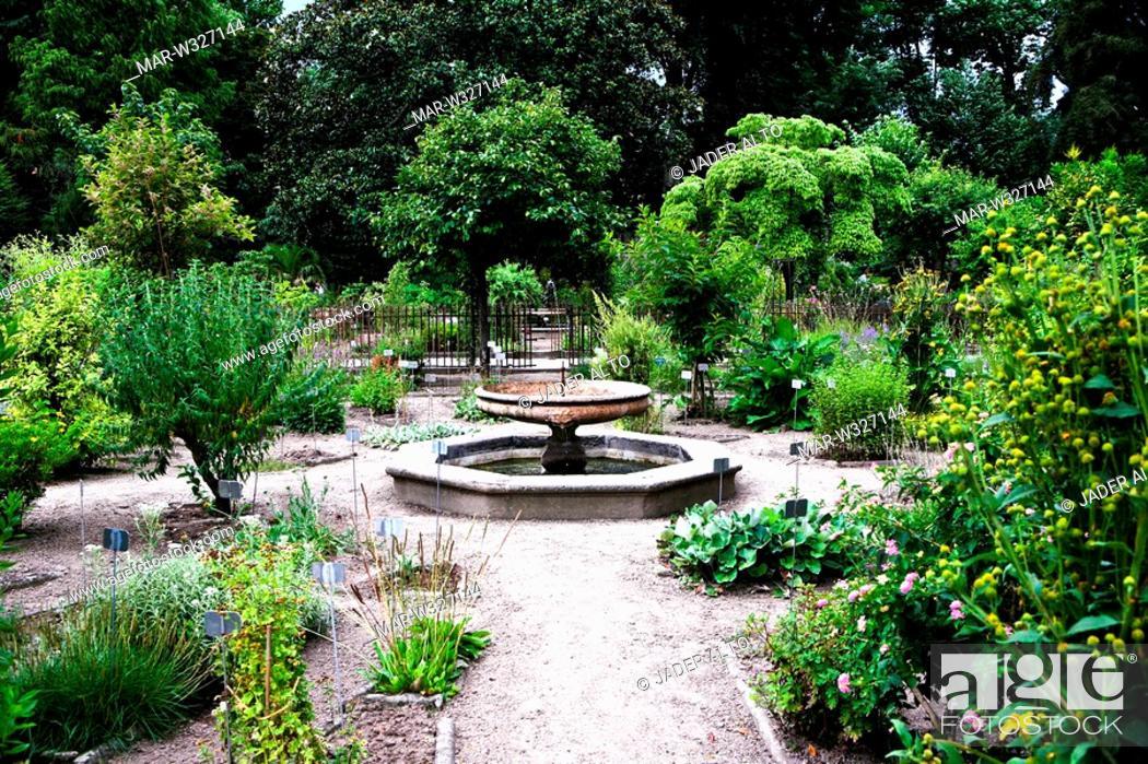 Orto botanico di padova the world s oldest academic botanical
