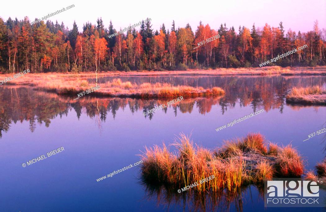 Stock Photo: Lake in morning light. Czech Republic.