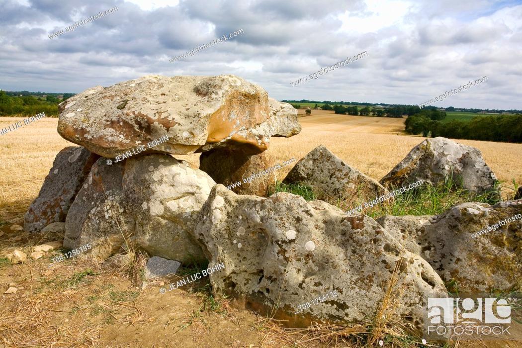 Stock Photo: France, 85: dolmen salvatole.