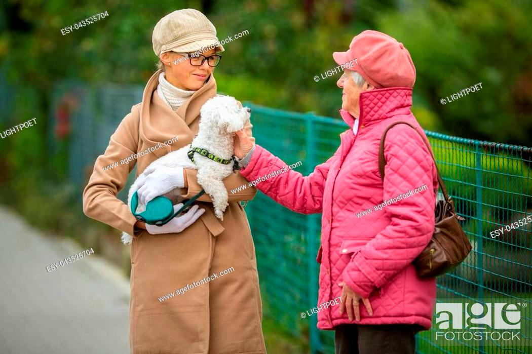 Stock Photo: Senior woman walking her little dog on a city street with her granddaughter; looking happy and relaxed (shallow DOF).