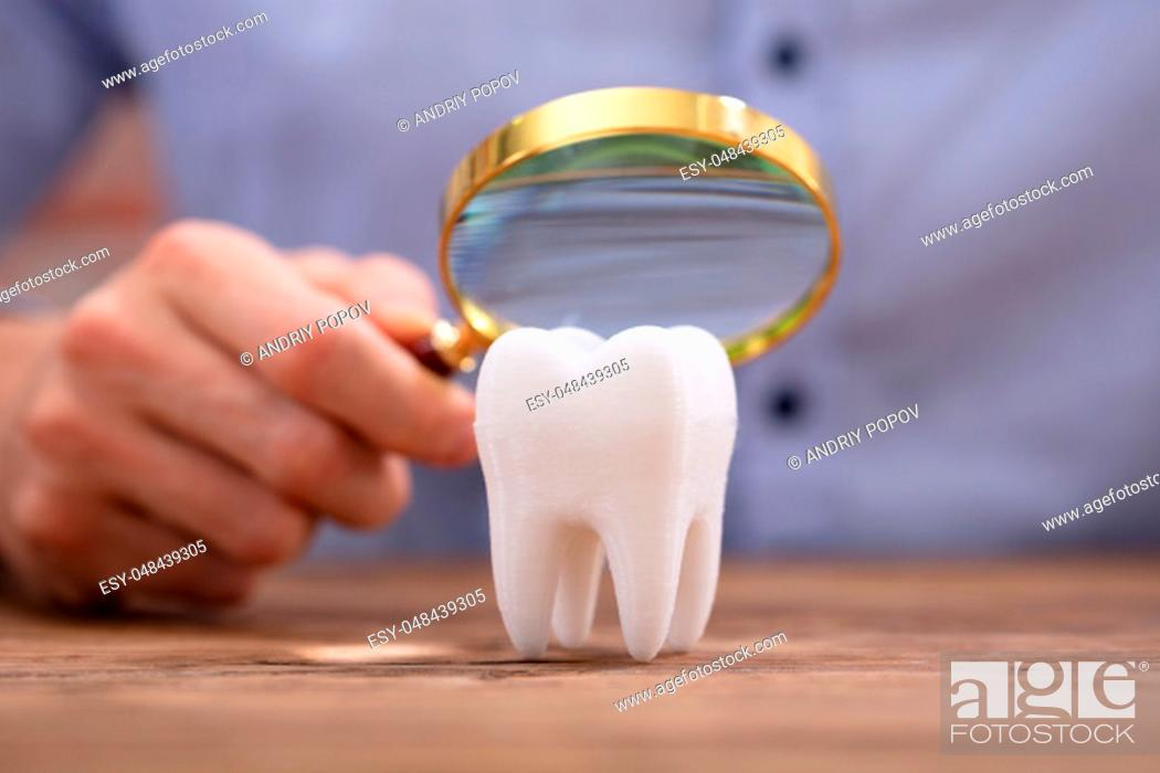 Stock Photo: Close-up Of A Person Holding Magnifying Glass Over The Healthy White Tooth On Wooden Desk.