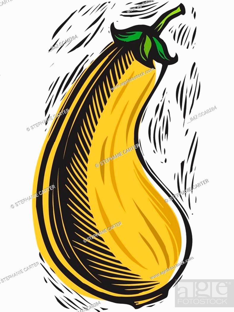 Stock Photo: yellow squash.