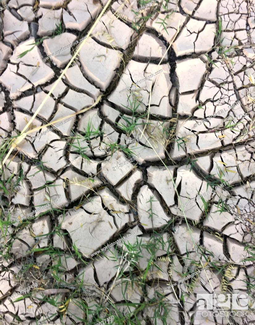 Imagen: Dry cracked earth after a long hot summer with little rain.
