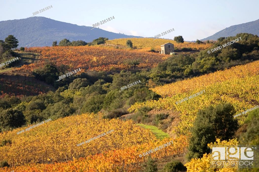 Stock Photo: Mountains near the village of Roquebrun, Languedoc, southern France.