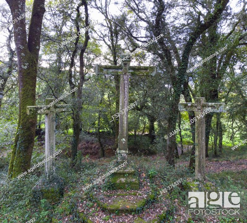Imagen: View from a drone of the holm oak and oak forest that surrounds the Church of San Vicente. Guriezo, Cantabria, Spain, Europe.