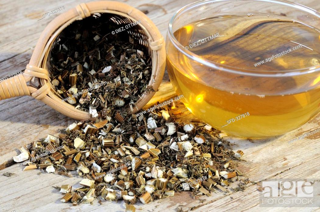 Mugwort tea and dried mugwort with a tea strainer, Stock