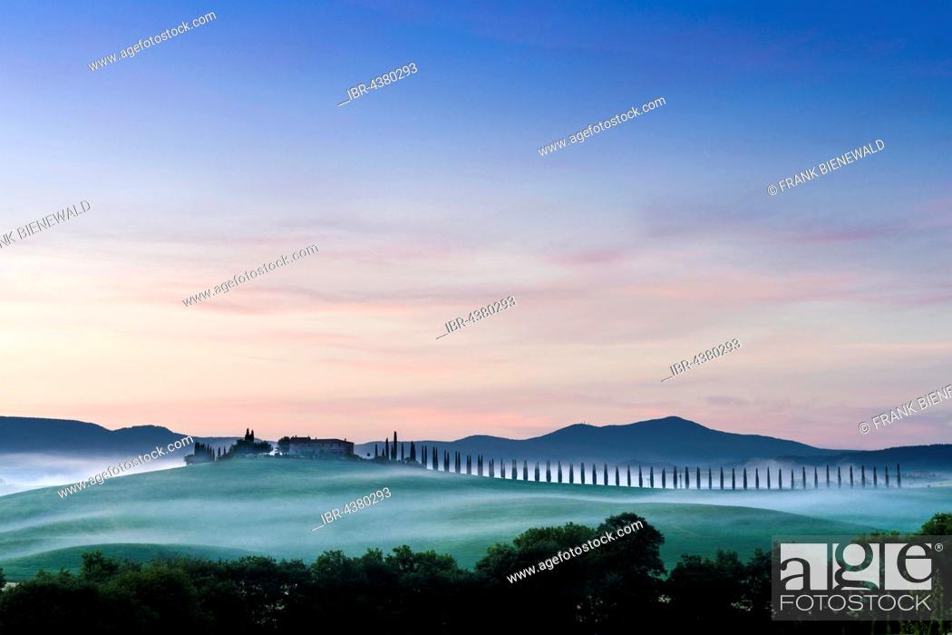 Stock Photo: Typical green Tuscan landscape in Bagno Vignoni, Val d'Orcia with a farm on a hill, fields, cypresses, trees and morning fog before sunrise, San Quirico d'Orcia.