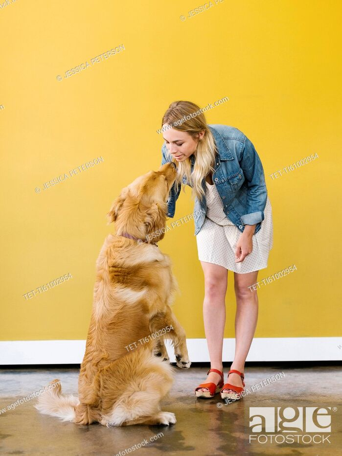 Stock Photo: Young woman playing with golden retriever.