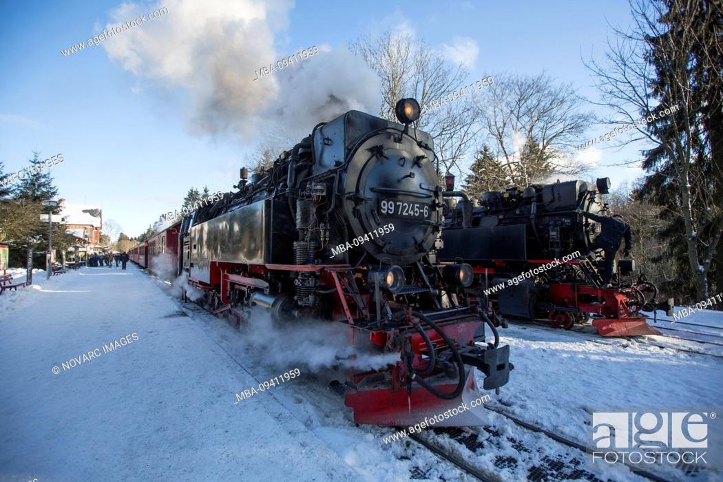Stock Photo: Harz narrow-gauge railway Brocken, Harz, Germany.