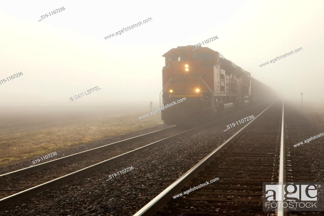 Stock Photo: Freight train, USA.
