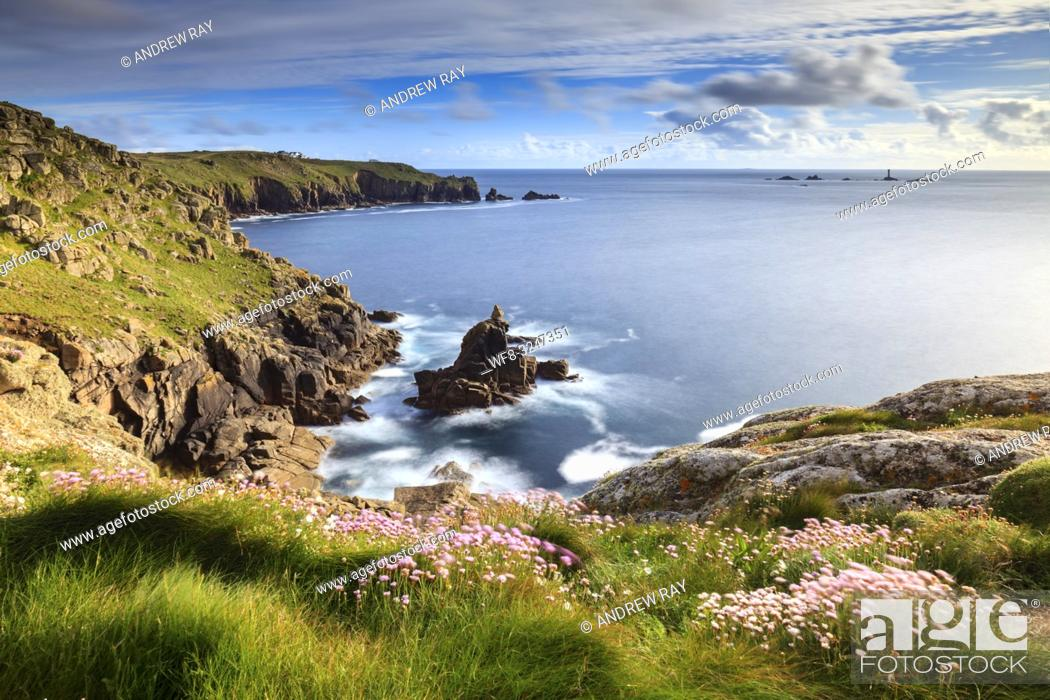 Stock Photo: Sea thrift on Mayon Cliff, near Sennen Cove in Cornwall, captured in mid May with Land's End and the Longship Lighthouse in the distance.