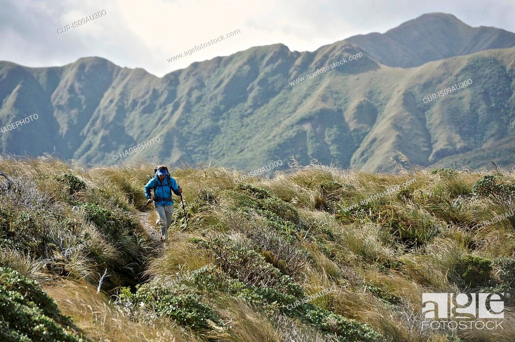 Imagen: Female hiker hiking in mountains, Tararua Ridge, New Zealand.