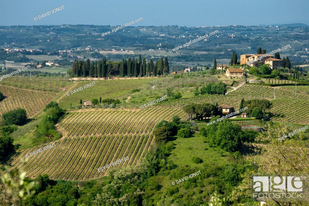 Stock Photo: Toscana landmark.