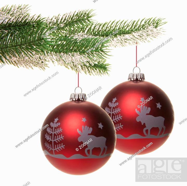 Rote Christbaumkugeln.Rote Christbaumkugeln Hangend Am Tannenzweig Isoliert Mit