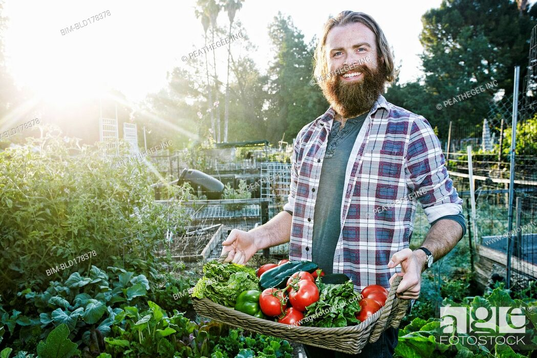 Stock Photo: Caucasian man holding basket of vegetables in garden.