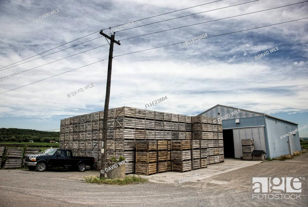 Imagen: Barn with wooden crates, Holland Marsh, central Ontario.
