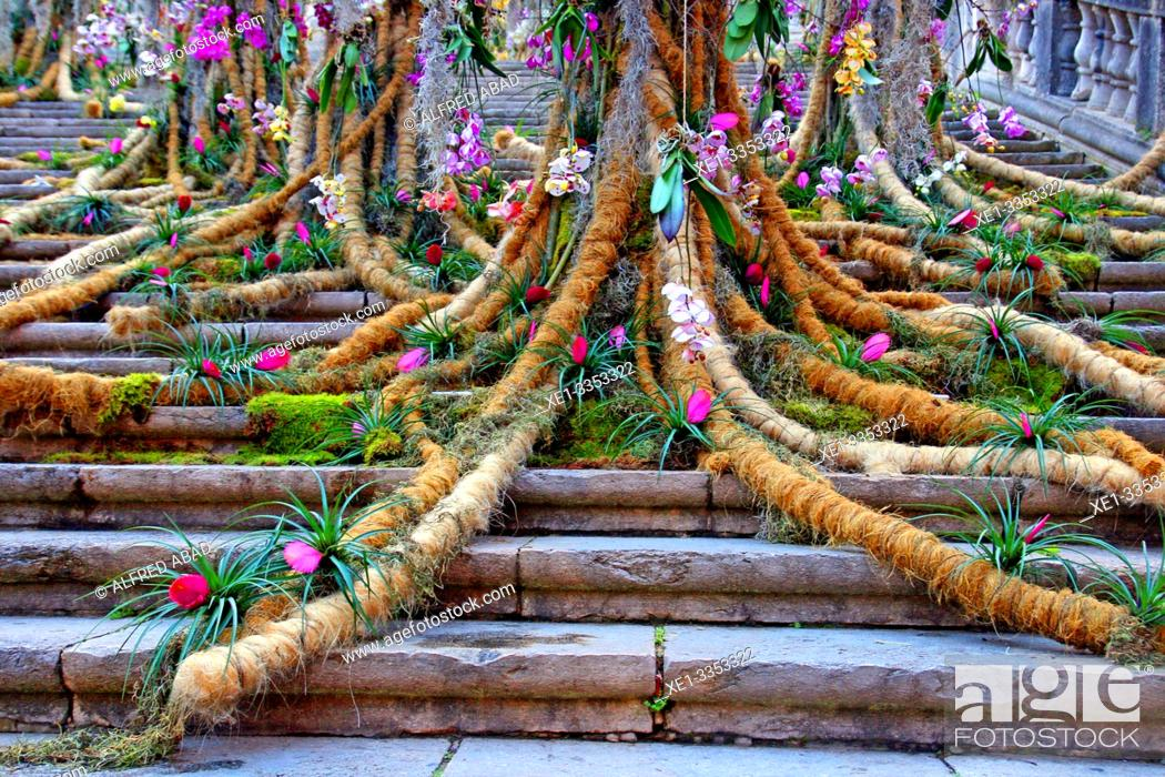 Stock Photo: staircase of the Cathedral, floral decoration, Temps de Flors 2019 festival, Girona, Catalonia, Spain.